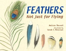 "Cover of the picture book ""Feathers, Not Just for Flying"" by Melissa Stewart, illustrated by Sarah Brannen. The cover shows six feathers of different shapes, sizes, and colors."