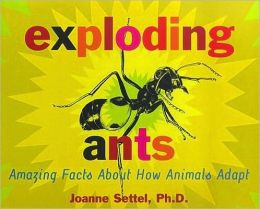 exploding_ants_cover
