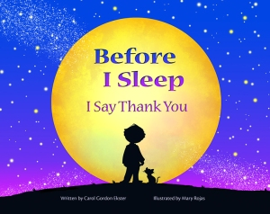 Front Cover - Before I Sleep  copy