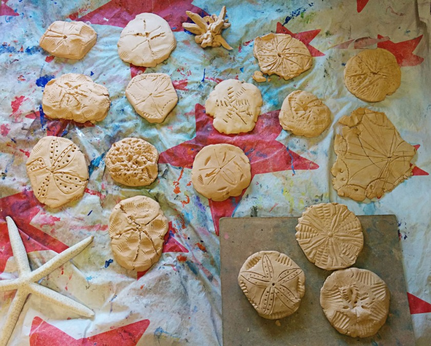 PreK made sand dollars of self hardening clay.