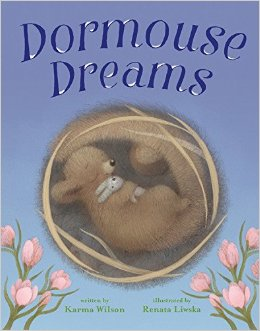 dormouse-dreams