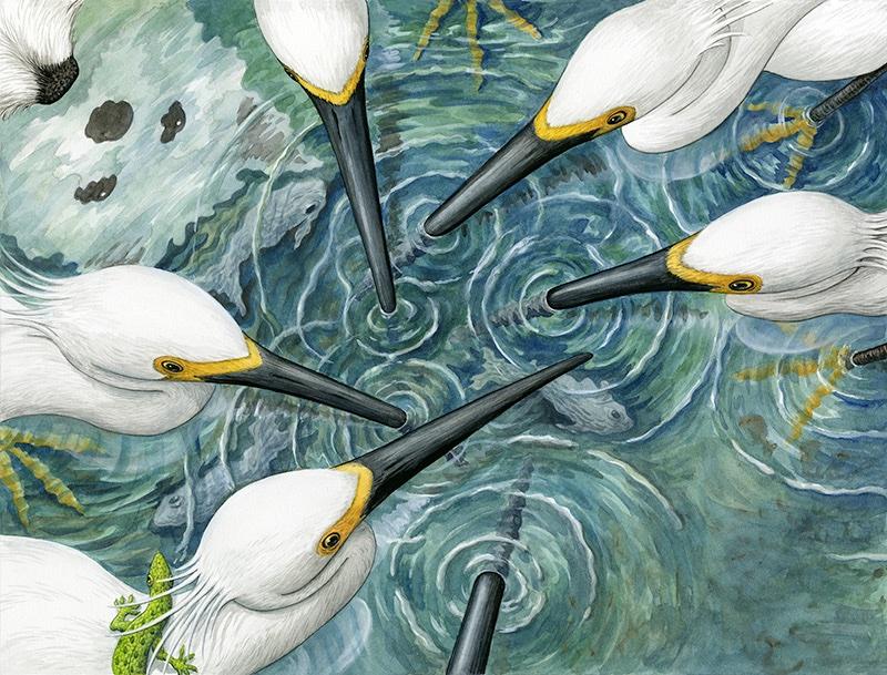 exibid_13_Egrets