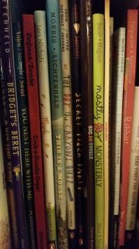 bookshelfsnapshot