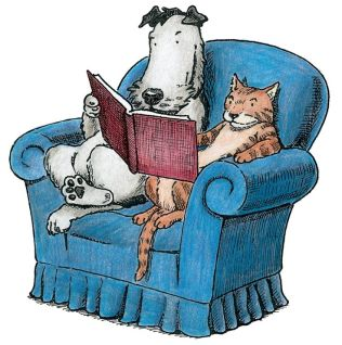dog and cat in chair image