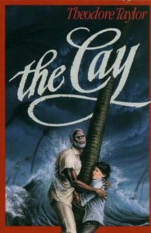 The Cay image