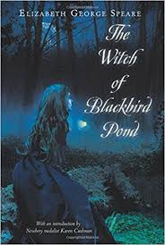 The Witch of Blackbird Pond image